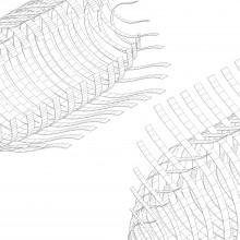 [19] Biomimétisme