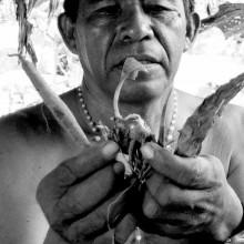 [12] Chamane avec des lianes d'Ayahuasca